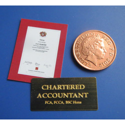 Chartered Accountant plus Certificate
