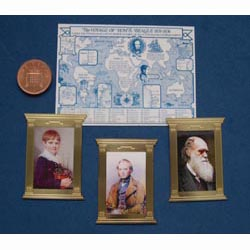 The Darwin Package (Brass Frames)