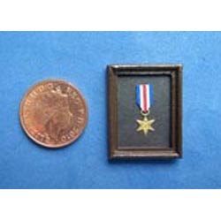 WW11 France & Germany Star