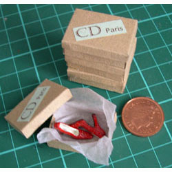 Pair of Red Shoes in a Shoebox