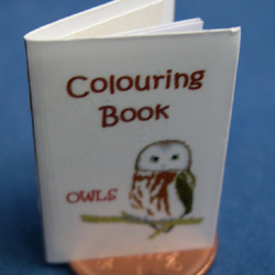 Owl Colouring Book