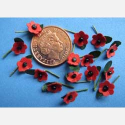 Rememberance Day Poppy