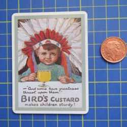 Birds Custard Tin Sign with Magnet